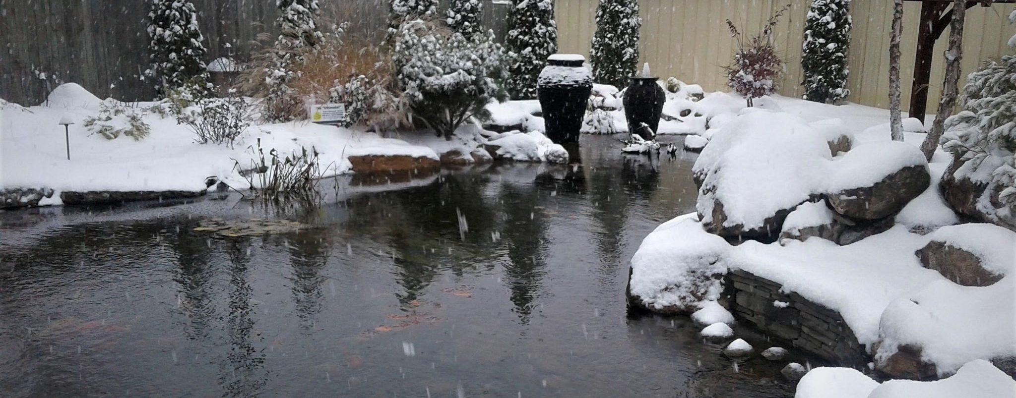 Winter Pond Keeping